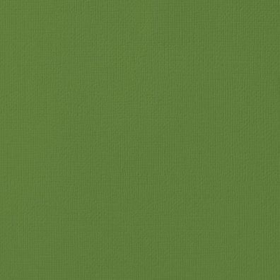 "Karton 12""x12"" Spinach American Crafts"