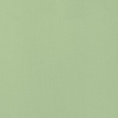 "Karton 12""x12"" Mint American Crafts"