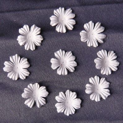 Foundation Blooms White 22 mm