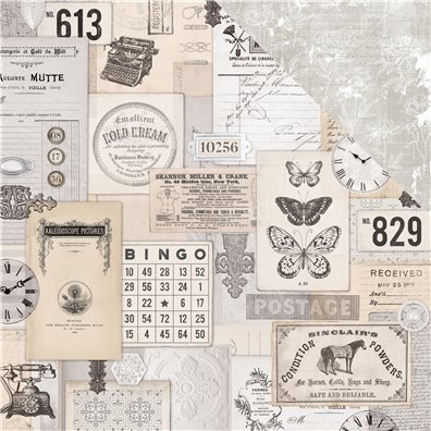 Pen & Ink - Ephemera mønsterpapir fra KaiserCraft