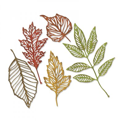 Sizzix Tim Holtz Thinlits Dies - Skeleton Leaves