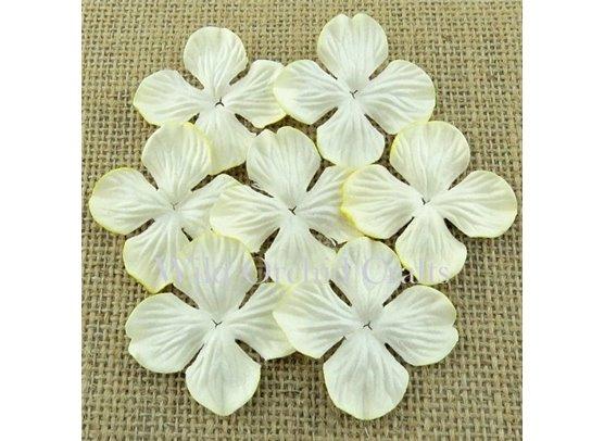 Hydrangea Blooms Ivory 50 mm