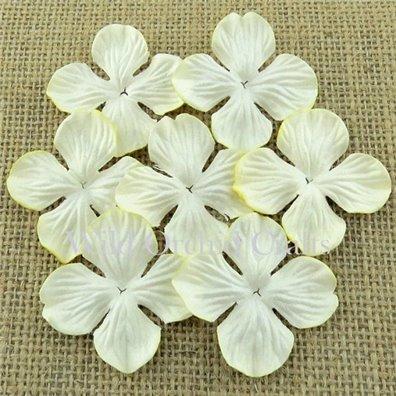 Hydrangea Blooms Ivory 35 mm