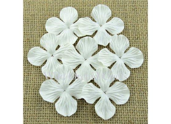 Hydrangea Blooms White 25 mm