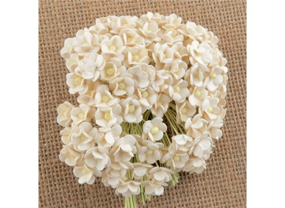 Miniature Sweetheart Blossom Ivory
