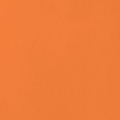 "Karton 12""x12"" Carrot American Crafts"