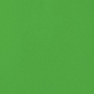 "Karton 12""x12"" Grass American Crafts"
