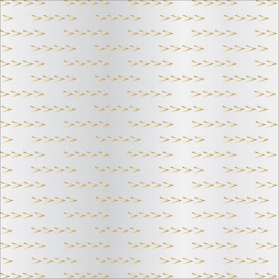 Signature Essentials Clear Paper Gold Arrows 12x12 Overlay fra T