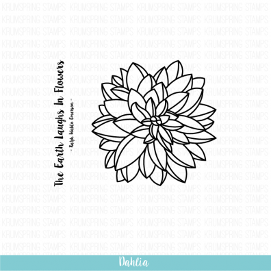 Krumspring clear stamp - Dahlia